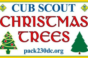 Tree sale (Photo courtesy of Cub Scout Pack 230)