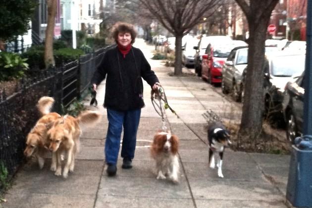Martha Burns, veteran pet sitter, with (from left) Reggie, Charlie, Pippi, and Sydney