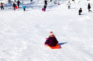 Sledding at the Capitol (Photo via Flickr/smarta)