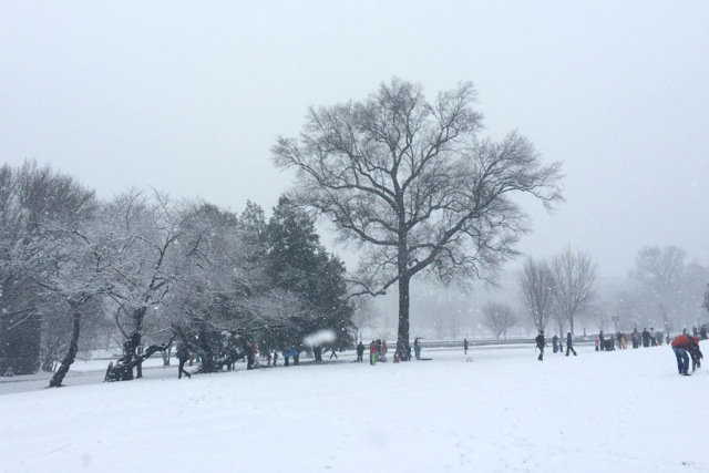 Capitol grounds during snowstorm, March 5, 2015
