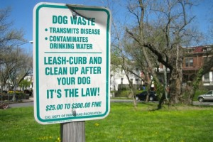 Previous version of D.C. dog poop signs, before fines were hiked (Photo via Flickr/dcmetroblogger)