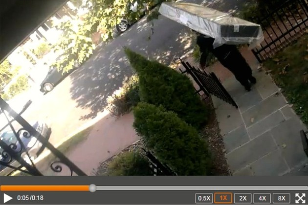 Delivery recorded on motion-detecting security camera (Photo courtesy of David Heyman)
