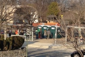 ShamrockFest portable toilets (Photo via Twitter/Denise Krepp)
