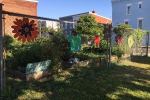 Wylie Street Community Garden