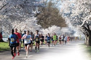 Photo via Credit Union Cherry Blossoms run