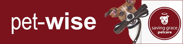 Pet Wise banner